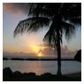 Photos from Caribbean